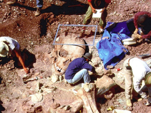 Doctored photo purporting to show archaeologists discovering skeletons of giants.